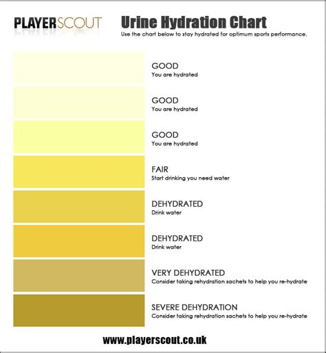 urine color chart the gallery for gt urine color chart meaning