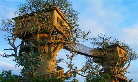 really cool tree houses cool tree house amazing tree houses really cool house plans mexzhouse