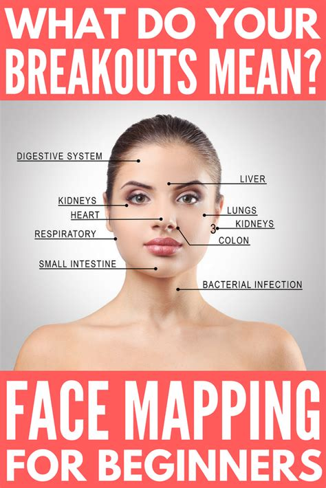 Can Detoxing Your Make Your Skin Breakout by Mapping 101 What Do Your Breakouts And How Can