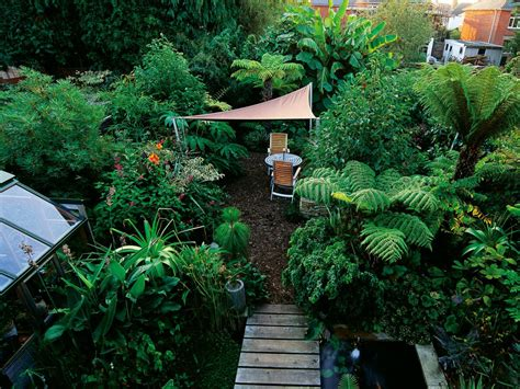 design a shade garden hgtv