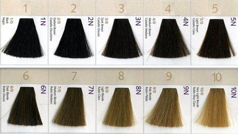 level 5 hair color hair color levels again hairagainsalon info