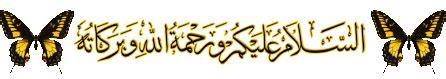 wallpaper kaligrafi gif gambar animasi kupu kupu republika rss