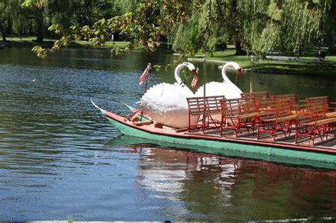 swan boats of boston tours boston ma - Swan Boats Montreal