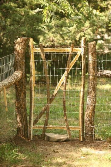 triyae backyard fence ideas for dogs various