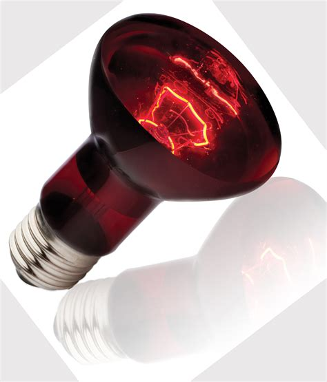 Heat L Light Bulb by Infrared Heat L
