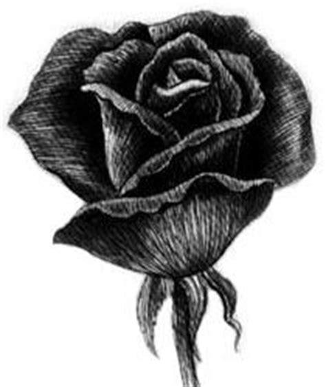 imagenes de flores sombreadas 1000 images about flores negras on pinterest black