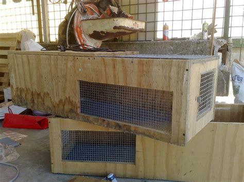 community gabbia nuove gabbie riscaldate per svezzare i pulcini cocincina