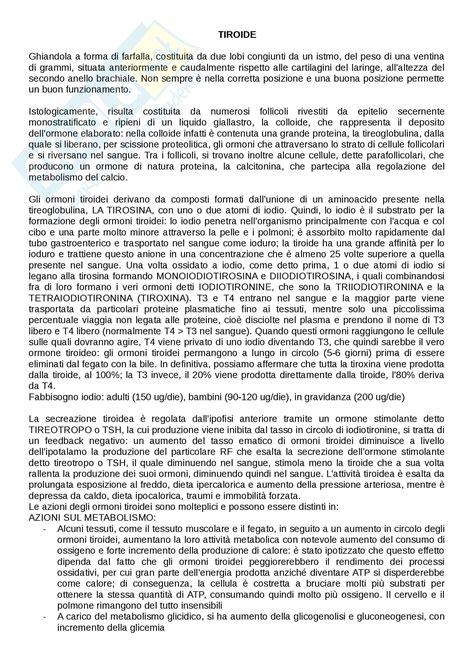 appunti medicina interna lezioni generali appunti di medicina interna