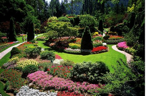 designing a garden with landscape design principles