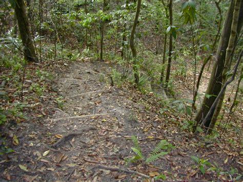 Garden Of Trail Garden Of Trail Florida Hikes