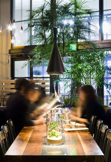 Dining Table Plants Plant Cafe Organic By Ccs Architecture Dining Table Lighting Green Plants Restaurant