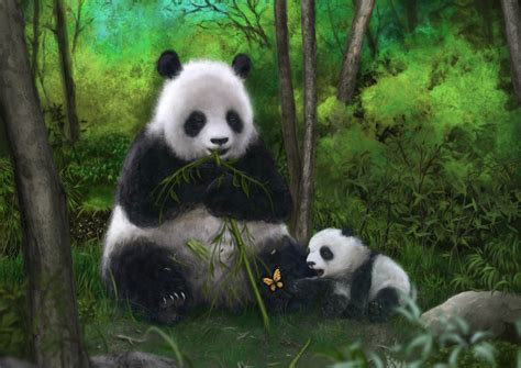 libro panda bear panda bear download animals illustrations wallpaper 1754x1240 wallpoper 302210