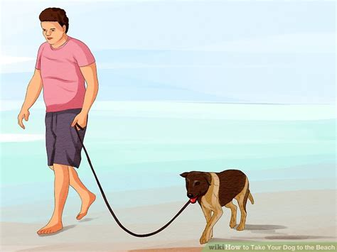 when can i take my puppy to the park how to take your to the 11 steps with pictures
