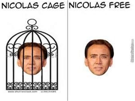 What Movie Is The Nicolas Cage Meme From - 84 best images about cage jokes on pinterest the
