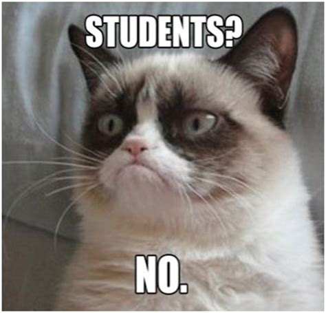 Original Grumpy Cat Meme - mrs thomas s owl standing 5th grade day 2 of ian s blog