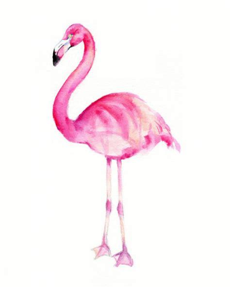 wallpaper tumblr flamingo watercolor flamingo tumblr