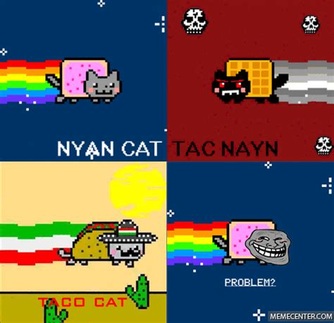 Nyan Cat Memes - nyan cat memes best collection of funny nyan cat pictures