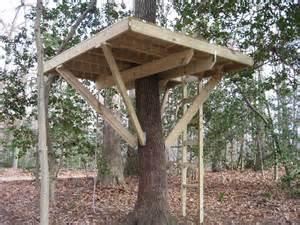 Build A Zipline In Backyard My Treehouse 5 Steps