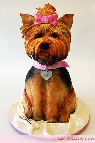 can yorkies eat chocolate 58 best images about cakes on puppy cakes amazing dogs and