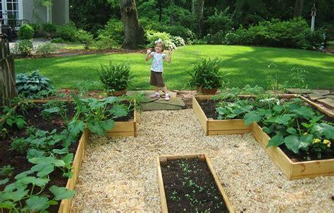 advantages of raised garden beds advantages and disadvantages of raised beds redeem your