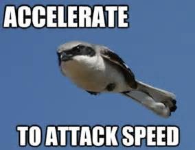Attack speed caption picture 50 best funny captions