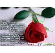 Yozuvli Rasmlar  RASMLAR Каталог статей LoveMp3