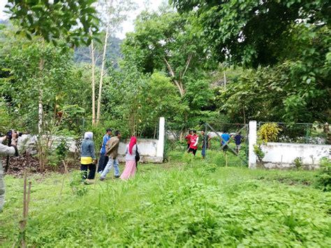 Tanaman Herbal Arbena Hutan begini kearifan lokal pengelolaan hutan untuk pengobatan di desa pakuli induk sigi mongabay co id