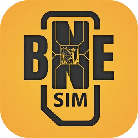 best international sim card bnesim global data sim card the best international sim