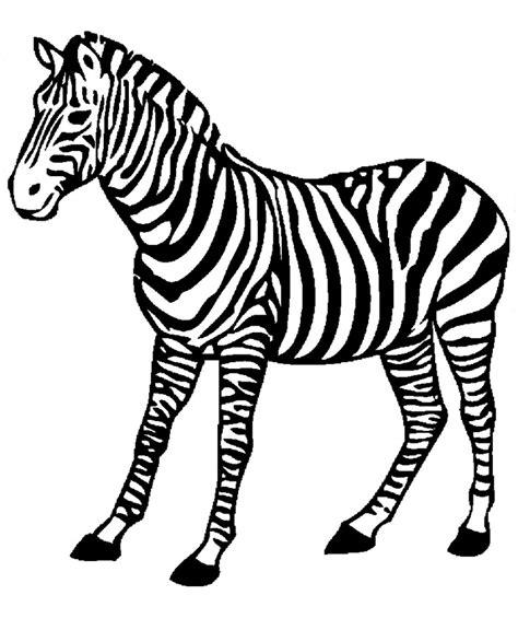 zebra template printable stencils studio design gallery