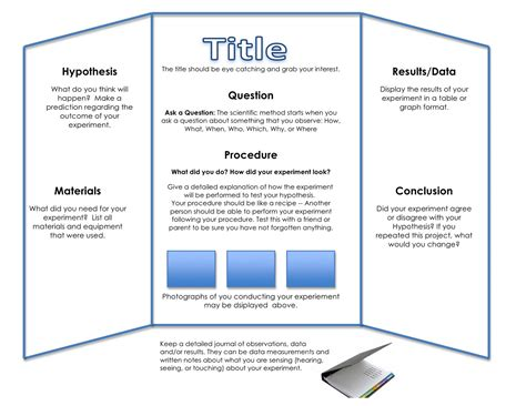 science project template tri fold board for science project http www