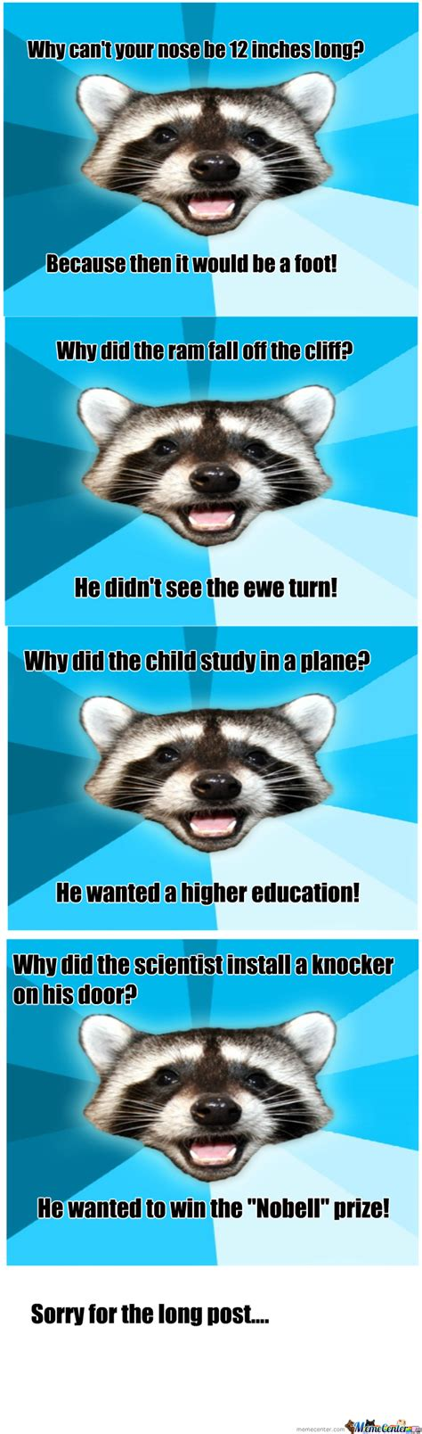 Bad Pun Raccoon Meme - lame pun coon compilation by ingodwetrust meme center