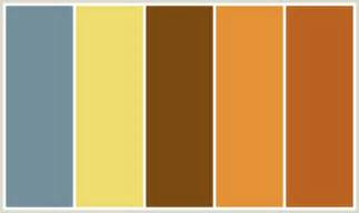 brown color schemes chocolate brown complementary colors brown hairs