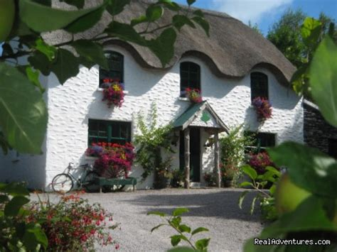 lissyclearig thatched cottage lissyclearig thatch cottage ireland bed breakfasts