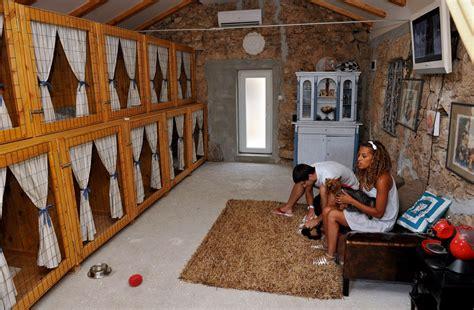 dog hotels  croatia