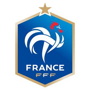 soccer world cup : come cheer for the french national team