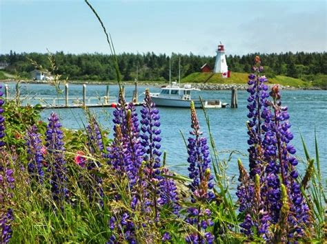 lobster boat for sale near me innkeeping and bed breakfast inns for sale blog