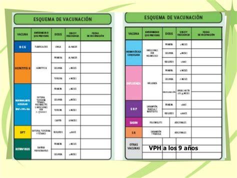 norma de inmunizaciones 2016 esquema b 225 sico de inmunizaciones en m 233 xico