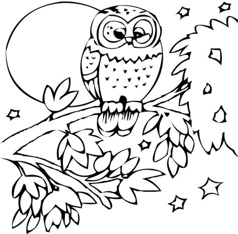 coloring pages animal coloring pages for kids to print