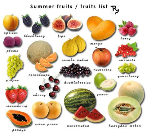 list of fruits the gallery for gt all fruits name list in with