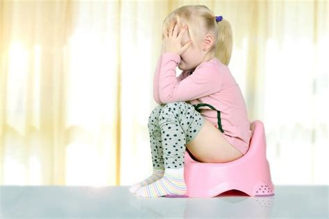 throw poop in a toilet house numbertwoguide what to do when your child won t poop on the potty 8 tips