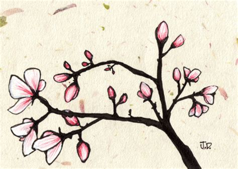 spring pictures to draw floral flourishes on pinterest flower drawings drawings