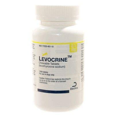 levothyroxine for dogs levocrine chewable levothyroxine for dogs vetrxdirect