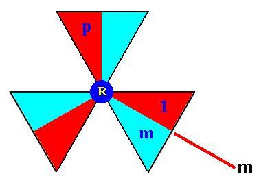 turing pattern generator 3 d crystals xxiv