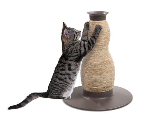 Cat Scratching by Funky Cat Scratching Posts Cat Tree Uk The Uk S