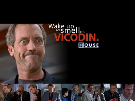 house md music download dr house hugh laurie house md 1024x768 wallpaper architecture houses hd desktop