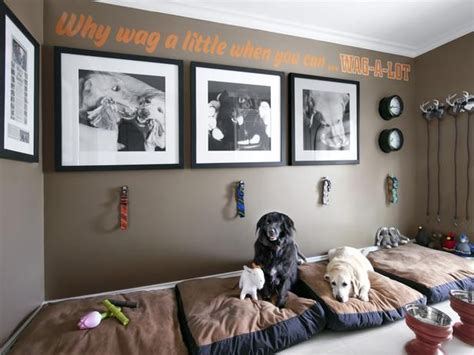 20 best ideas about rooms on pet rooms