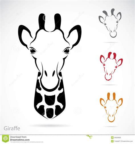 vector image of an giraffe head stock photos image 36326693