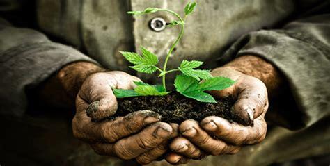 騁agere bureau nutrire il pianeta energia per la vita 187 la gazzetta di lucca
