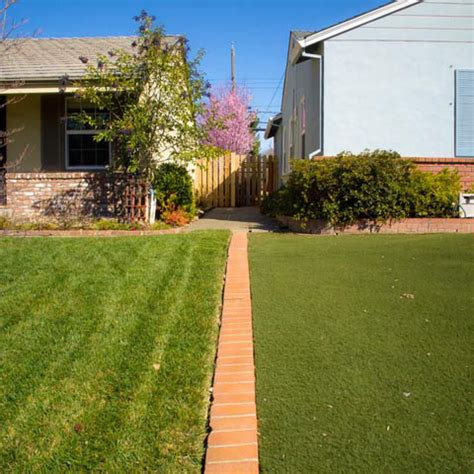 clever photos document property lines in suburban