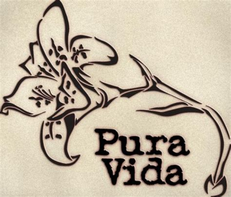 pura vida tattoo designs 57 best images about costa rica travel on